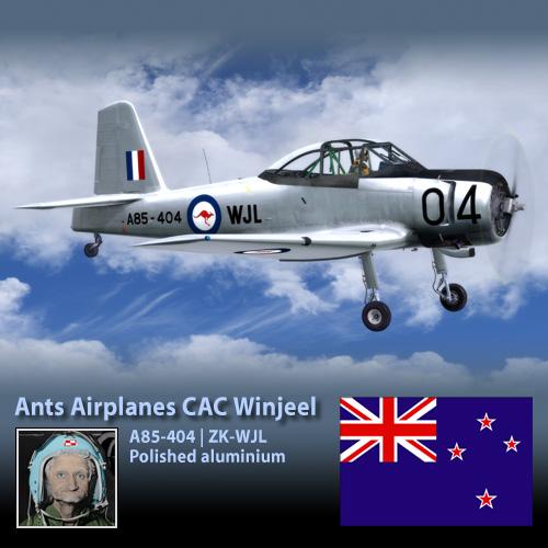 Ants CAC Winjeel ZK-WJL - Shiny